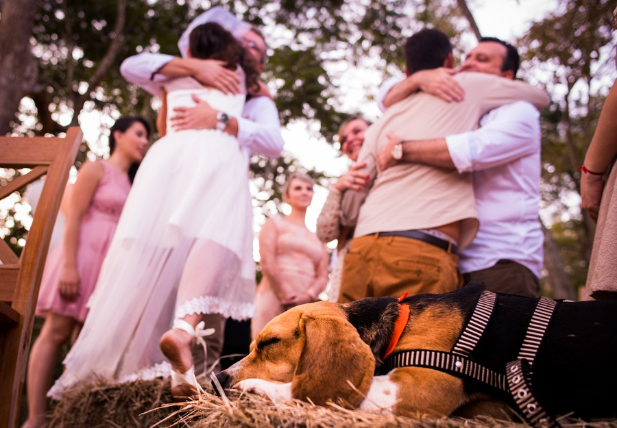 Casamento na Serra_ Destination Wedding na Serra_Casamento Neumann's_Bia e Michel_foto19